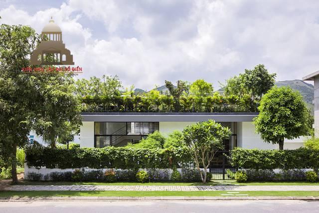 Tìm hiểu lý do kiến trúc xanh ngày càng được ưa chuộng 3